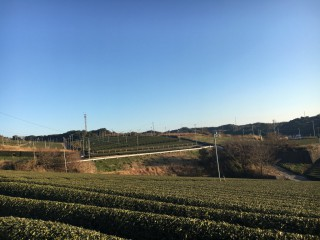 201701_yuimage2
